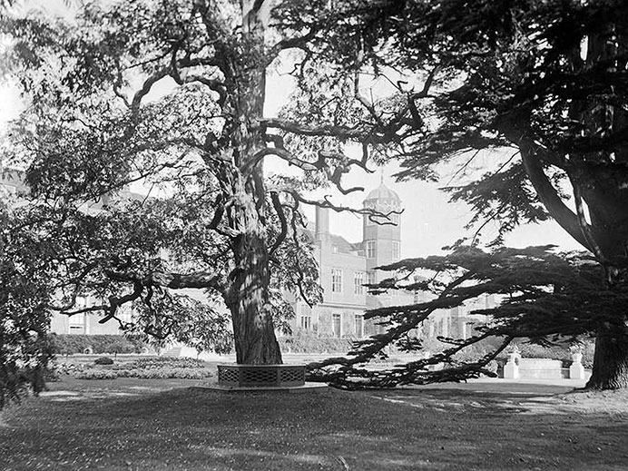 Black and white image with house and trees surrounding it
