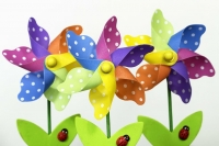 Colourful paper flowers
