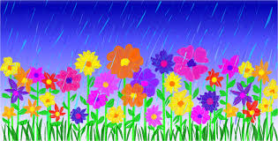 April Showers and Flowers