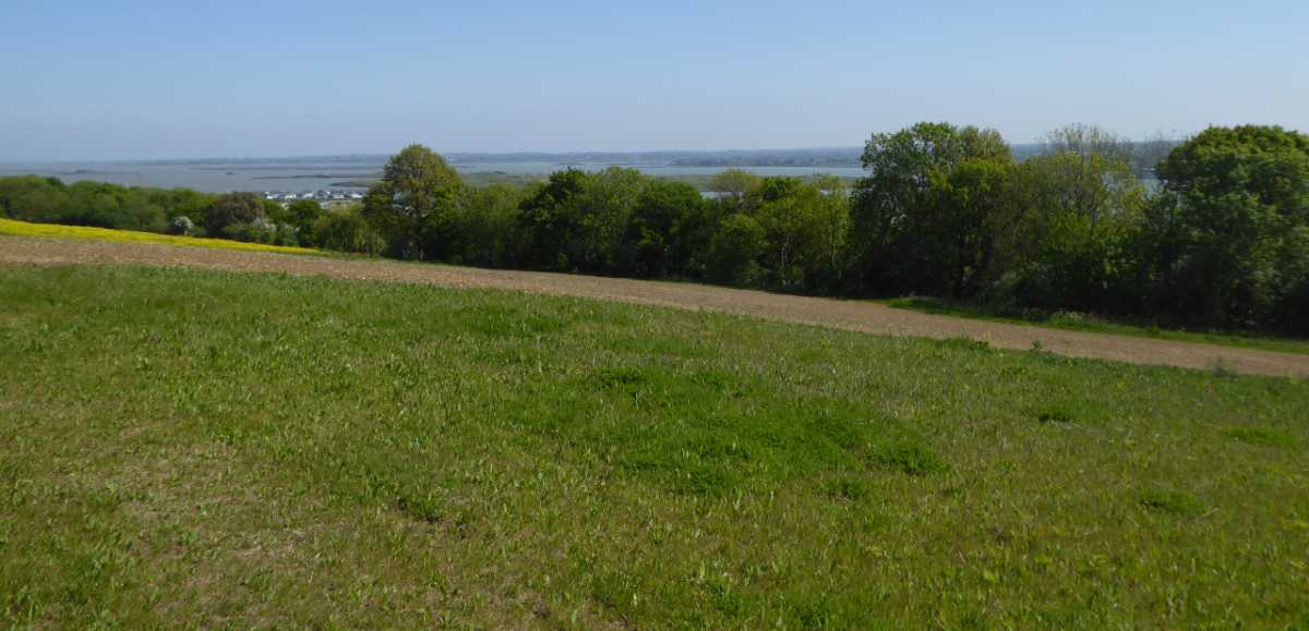 View of field in Cockham, Hoo Peninsula, Kent