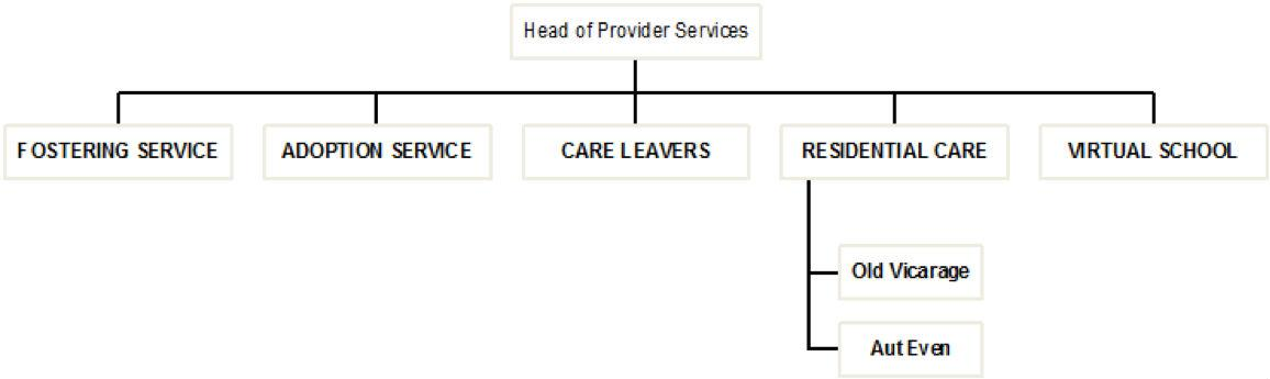 Diagram showing provider services. Head of Provider Services is on the first level.